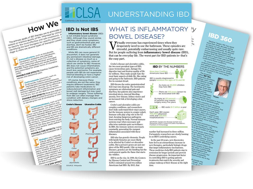 Understanding-IBD.jpg